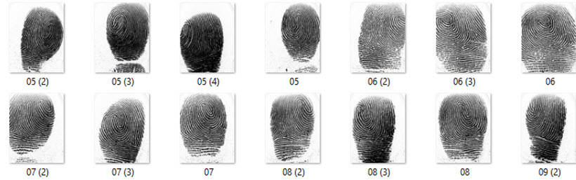 Dr.fingerprint
